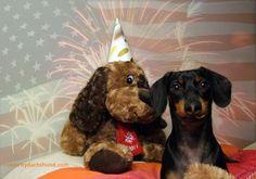 Happy 4th of July, #America!