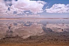 Deserto de Atacama, Chile - Salar de Atacama  https://www.facebook.com/Maladviagem/