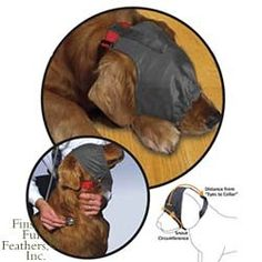 Thundershirt Pet Calming Cap reduces dog anxiety, fearfulness as well as aggression in high-stress situations by reducing the dog's visual stimulus. Animals And Pets, Cute Animals, Female German Shepherd, Dog Anxiety, Dog Agility, Old Dogs, Dog Training Tips, Dogs And Puppies, Doggies