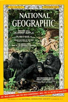 National Geographic Jane Goodall cover, December 1965 / National Geographic Photography / Covers