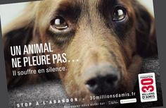 30 millions d'amis contre l'abandon des animaux Translation: 30 million animals are abandoned. Help stop our friends from being on the streets Save Animals, Animals And Pets, Cat Brain, Animal Protection, Vegan Animals, Animal Rights, Animal Rescue, Best Dogs, Cute Dogs