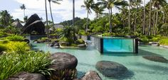 Laucala Island, Fifi also has a 5-thousand square metre swimming pool equipped with a pool bar