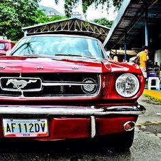 Ford Mustang, en Los Dos Caminos