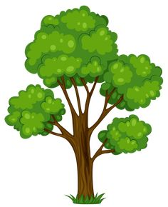 Gallery - Recent updates Painted Green Tree PNG Clipart Picture Safari Png, Clipart Gallery, Cartoon Trees, Tree Clipart, Picture Tree, Diy Crafts To Do, Art Drawings For Kids, Image Painting, Tree Illustration