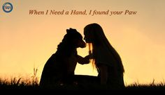 """""""Quote of the day"""" #timeforpet #dogs #dog #doglove #doglovers #animallovers #animals #animallove #quotes #animalquotes #quoteoftheday #petcare #petlove #pet #pets #bangalore #saturday #weekend"""