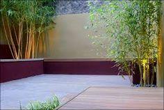 3 bamboo clumps increase in height to lead the eye across, A low maintenance contemporary city garden design. Home And Garden, Garden Design, Diy Pergola, Minimalist Garden, Small Gardens, City Garden