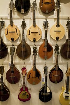Any of these mandolins would be fine - sales