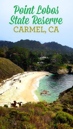 i just recently wrote about our stay at the Hofsas House in Carmel, CA, and how much we enjoyed it. the stay was wonderful, partly because the landscape of Carmel is so breathtaking. the rocky ocean views are a little different the the ocean views you see here in Southern California. and it was such More Popsicles...