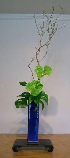 Ikebana Japanese flower arrangement I like the color combo of green Anthirium with the cobalt blue. Ikebana Arrangements, Arrangement Floral Ikebana, Tropical Floral Arrangements, Flower Arrangements Simple, Tropical Flowers, Exotic Flowers, Deco Floral, Arte Floral, Floral Design