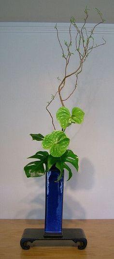 2 anturios verdes y 2 hojas de piñanona