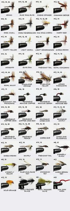 flies 23812: fly fishing flies assortment, 80+ flies, with cases, Fly Fishing Bait