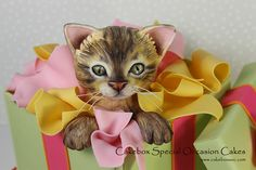 Quincys Kitten Cake | Flickr - Photo Sharing!