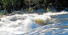 Stoppa tjänstemännens framfart i vattenkraften