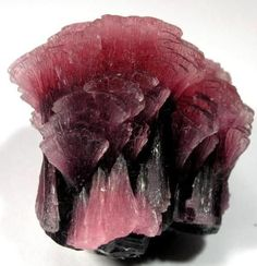 Elbaite Pink Tourmaline of unbelievable quality and curved form