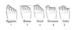 Learn Your Lineage Through Your Feet. Not entirely sure how accurate this is, but according to this, I'm Egyptian from way back when. :)