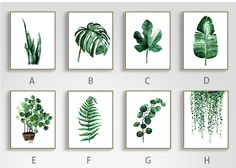 Green Tropical Plant Leaves Canvas Art Print Poster - Free Worldwide Shipping Modern Green Tropical Plant Leaves Canvas Art Print Poster , Nordic Green Plant Wall Pictures Kids Room Large Painting No Frame