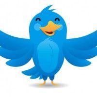 8 conseils pour obtenir des followers de qualité sur Twitter   Metrosapiens