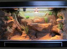 Bearded Dragon Enclosure, Bearded Dragon Cage, Bearded Dragon Habitat, Gecko Terrarium, Reptile Terrarium, Tarantula Enclosure, Reptile Enclosure, Uromastyx Lizard, Lizard Cage