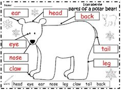 A+ POLAR BEAR: LABEL THE POLAR BEAR - TeachersPayTeachers.com