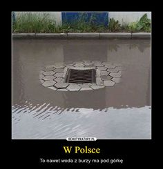 Wtf Funny, Hilarious, Polish Memes, Everything And Nothing, Lol, Humor, Best Memes, Poland, Fun Facts