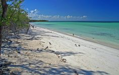 A Rough Guides round up of the best beaches in Cuba, featuring everything from vast stretches of golden sand to hidden tropical bays on offshore islands.
