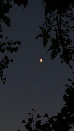 Moonlight Photography, Moon Photography, Night Sky Wallpaper, Scenery Wallpaper, Urbane Fotografie, Night Sky Photos, Aesthetic Photography Grunge, Beautiful Photos Of Nature, Applis Photo