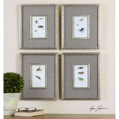 Uttermost Insect Study Framed Art, Set of 4 41536