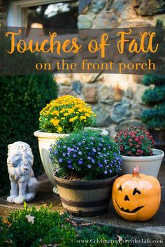 Touches Of Fall Porch, Fall Decorating, Outdoor Fall Decorating, Decorating For Fall, Fall Plants on the Porch, Porch Jack O Lantern, Celebrating Everyday Life with Jennifer Carroll