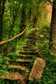 Treppe - stairs (by vampire-carmen )