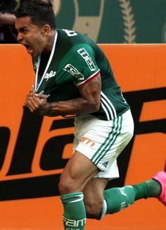 Palmeiras - Campeão Brasileiro 2016 - Rodada 36, 20/11/16