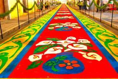 "Huamantla Pueblo Mágico y su ""Noche que Nadie Duerme""   e-consulta ... Celebration Around The World, Flower Rangoli, Magic Carpet, Arte Floral, Ikebana, Beautiful Landscapes, Textile Design, Flower Decorations, Bonsai"