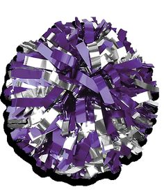 In-Stock Metallic Two Color Youth Cheerleading Pom Poms