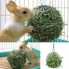 Výsledek obrázku pro rabbit toy feeder smart