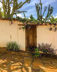 Latin America, Beautiful World, Ideas Para, Landscape, Plants, Alice, Painting, Travel, Decor