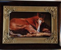 MUSICAL DARK WOOD GRAIN JEWELLERY BOX ~ NEW FOAL~ NEW ~ BOXED