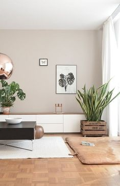 This living room gives a very nice feeling. The copper ball ceiling lamp is a gr… This living room gives a very nice feeling. The copper ball ceiling lamp is a great match witch the wall color, the plants are a contrasting element. Living Room Windows, Living Room Interior, Home Living Room, Living Room Designs, Living Room Decor, Apartment Interior, Living Room Wall Colors, Living Room Walls, Earthy Living Room