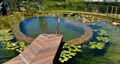 You are able to completely change your backyard into an awesome natural pool with exceptional water features. A natural pool design is a significant extension to your property. Swimming Pool Pond, Natural Swimming Ponds, Natural Pond, Swimming Pool Designs, Small Pool Design, Pond Design, Garden Design, Outdoor Ponds, Ponds Backyard