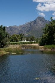 Fun Farm Walk - Something for the more energetic and fit! Escape from city life and take a 5km walk around the farm. Start off with a welcoming glass of our (low alcohol) Cape Jazz Shiraz – a celebratory stirrup cup! Then enjoy a brisk walk through the vineyards and along the beautiful Dwars River, absorbing the sights and sounds of a working wine farm set in part of South Africa's most beautiful countryside.