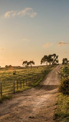 Nature Country Fence Road View iPhone 6 wallpaper