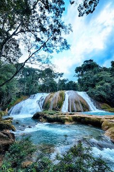 The many waterfalls of Agua Azul | ©Soma Images  (Agua Azul, Chiapas, Mexico)