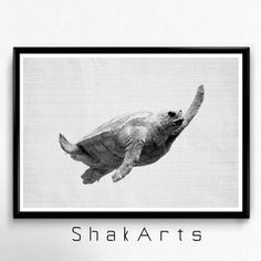 Turtle Print Beach Wall Decal Modern Decor Ocean Art by ShakArts