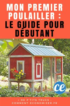 My First Chicken Coop: The Easy Guide For Beginners. Backyard Chicken Coops, Backyard Sheds, Chickens Backyard, Backyard Landscaping, Chicken Barn, Storage Building Plans, Garden Storage Shed, Urban Chickens, Shed Design