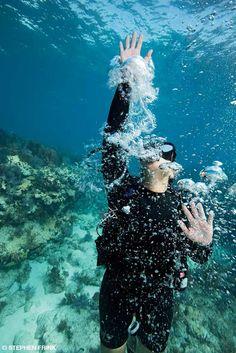13 Foot Dive::