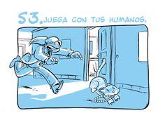 GUIA GATUNA 53
