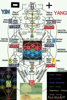 Tree of life law of attraction insight energy manifestation ray chakras correspondences care thought logic emotion frequency active passive action emotion ego identitiy superego reward libido mortido being intuiting expressing caring thinking feeling surviving knowledge undertanding wisdom