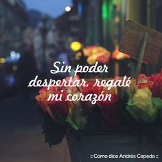 Andres Cepeda WebTeam @andrescepedawt Instagram photos   Websta Music Is My Escape, Decir No, Songs, Instagram, Texts, Romantic Quotes, Quotes, Poems Of Love, Song Quotes