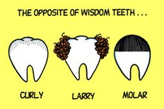 Happy Tuesday! Here's a little dental humor to help brighten that wonderful smile of yours. #cookeville #familydentistry