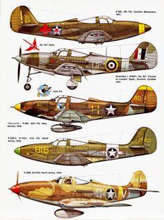 Squadron Signal - P-39 Airacobra http://maquettes-avions.hautetfort.com/archive/2011/03/06/squadron-signal.html