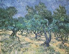 'Olive Garden' at St, Paul's Asylum in St. Remy, France.  By Van Gogh.