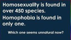 Equality.